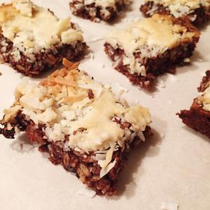 Toasted Coconut Cocoa Bars